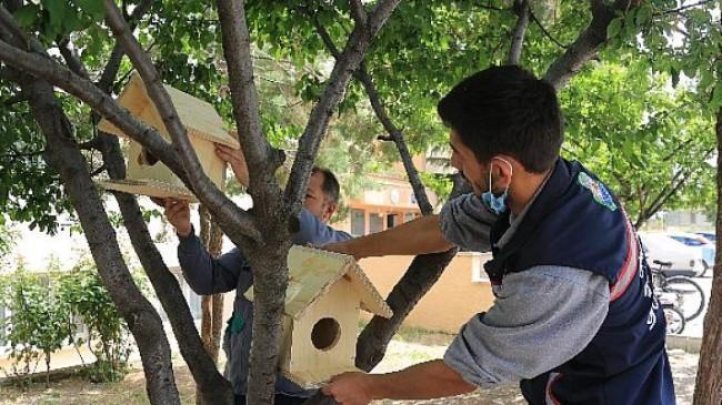 Gölbaşı Belediye Başkanı Ramazan Şimşek'ten Minik Canlara Yuva